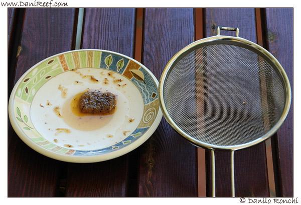 cibo-congelato-per-pesci-acquario-01