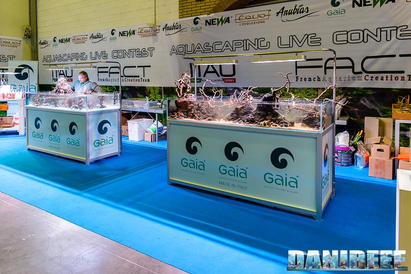 201610-aquascaping-contest-gaia-itau-vs-fact-petsfestival-169-copyright-by-danireef