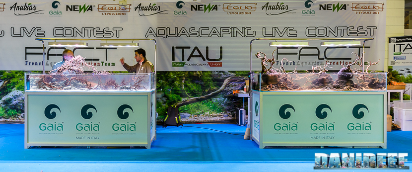 201610-aquascaping-contest-gaia-itau-vs-fact-petsfestival-170-copyright-by-danireef