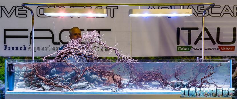 201610-aquascaping-contest-gaia-itau-vs-fact-petsfestival-172-copyright-by-danireef