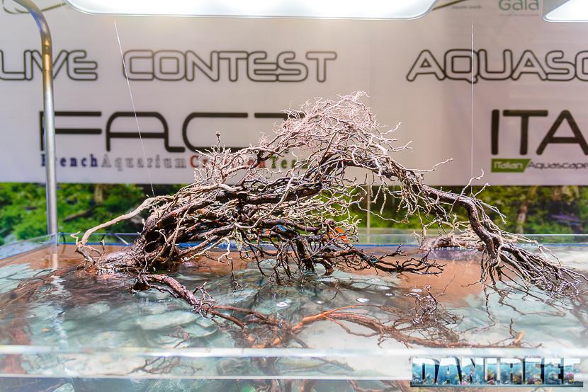 201610-aquascaping-contest-gaia-itau-vs-fact-petsfestival-92-copyright-by-danireef