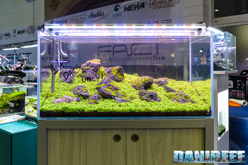 201610-aquascaping-gaia-petsfestival-159-copyright-by-danireef