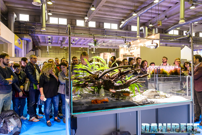 201610-aquascaping-gaia-live-oliver-knot-petsfestival-02-copyright-by-danireef