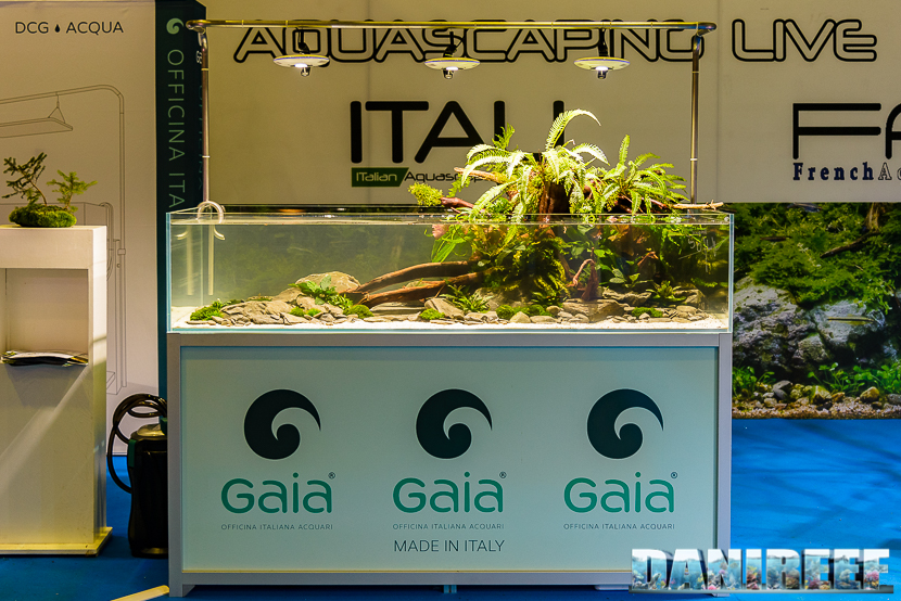 201610-aquascaping-gaia-oliver-knot-petsfestival-168-copyright-by-danireef