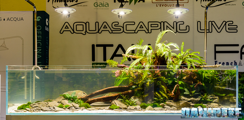 201610-aquascaping-gaia-oliver-knot-petsfestival-171-copyright-by-danireef
