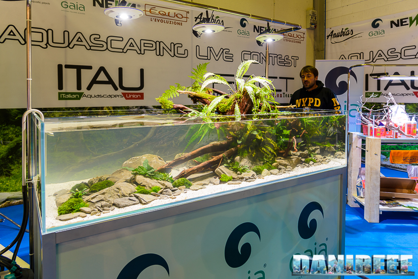 201610-aquascaping-gaia-oliver-knot-petsfestival-94-copyright-by-danireef