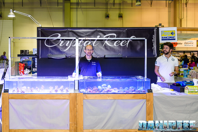 201610-crystal-reef-petsfestival-120-copyright-by-danireef
