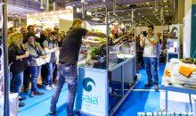 Aquascaping al PetsFestival 2016 con ITAU Gaia Italia Equo Anubias e Newa