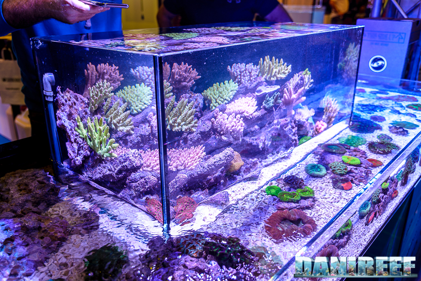 201610-hobby-acquari-layout-petsfestival-reefline-43-copyright-by-danireef