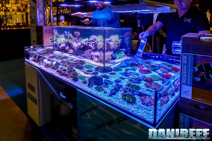 201610-hobby-acquari-layout-petsfestival-reefline-44-copyright-by-danireef