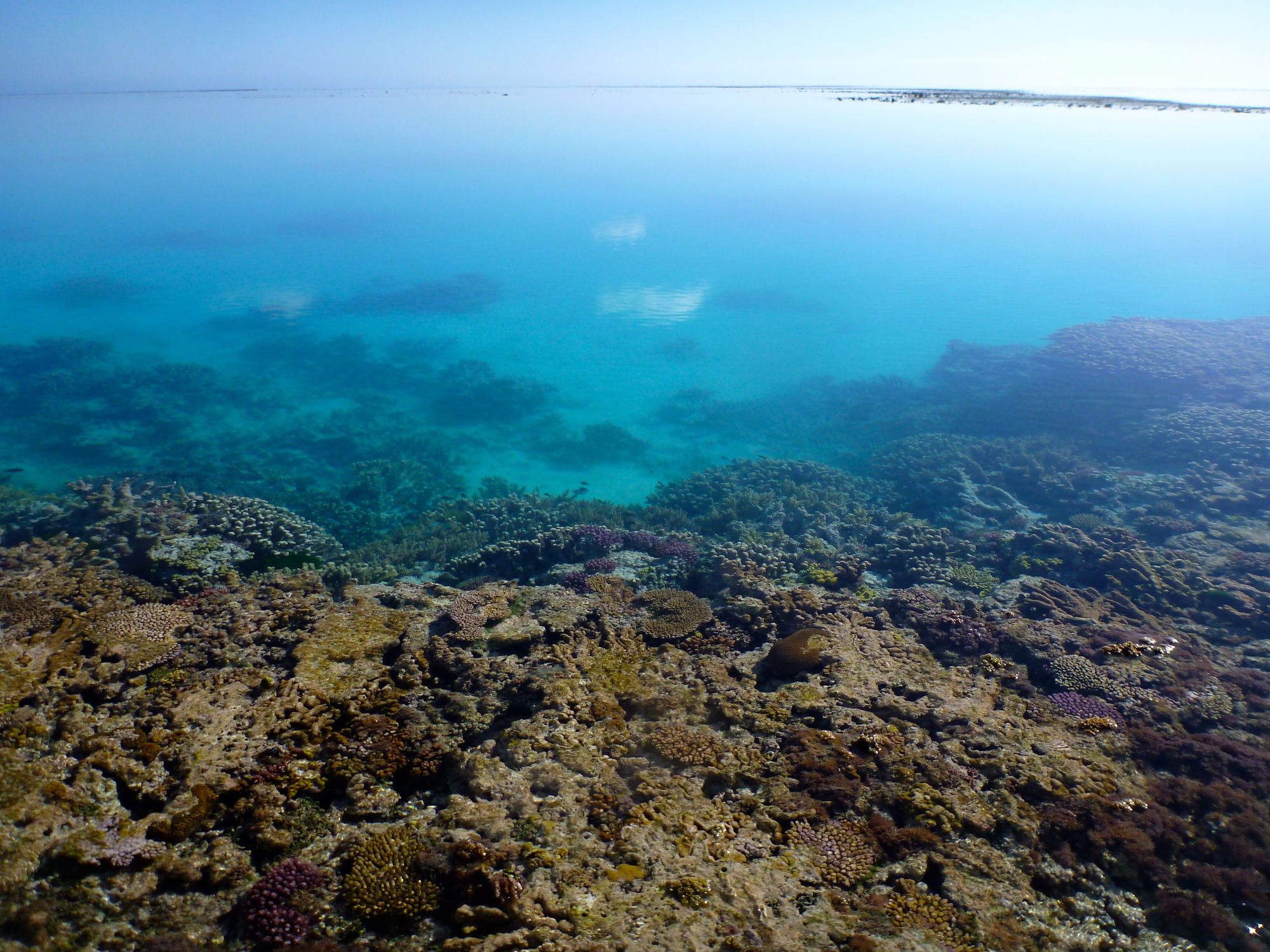 reef-flat-to-lagoon-2-1