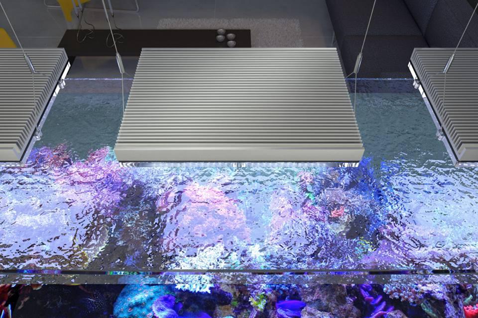 Plafoniere Blu Ray : Gnc bluray la nuova plafoniera che promette spettacolo allo stato puro
