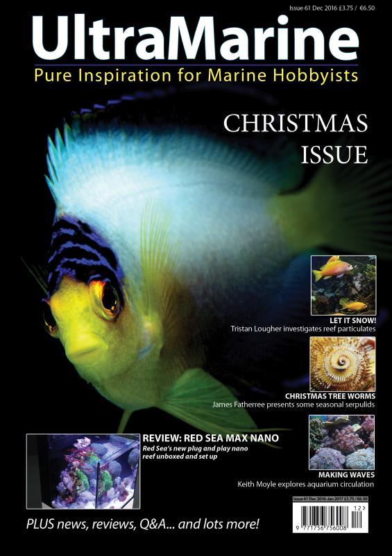 UltraMarine Magazine 61