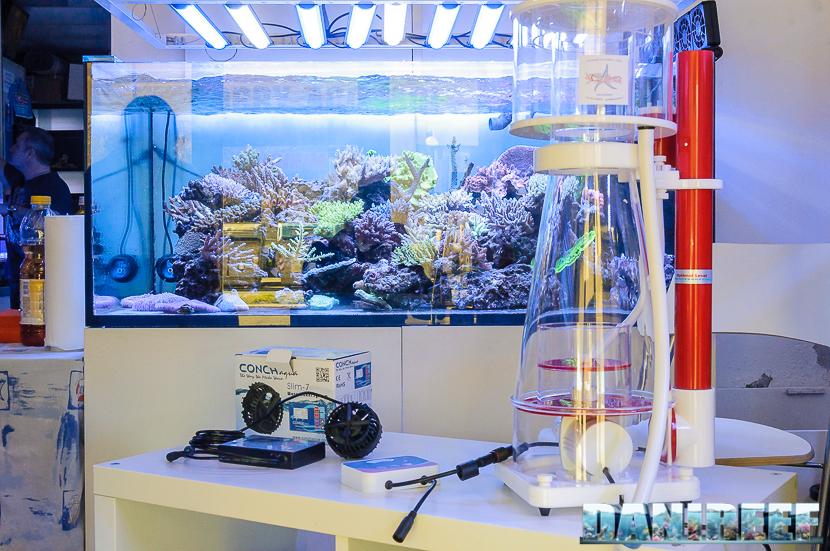 Pompa Conch Slim 7 e Skimmer Super Schiuma in primo piano sulla vasca espositiva all'ingresso di Hobby Acquari