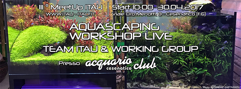 Aquascaping Workshop – Acquario Club Cesenatico