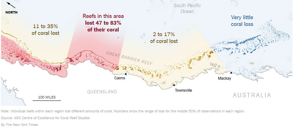 Flusso genico assistito ed evoluzione assistita per salvare la grande barriera corallina dallo sbiancamento