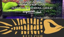 Reef Club Bz-Tn e Aquascaping Aquario Club Cesenatico: due nuovi appuntamenti per il fine settimana