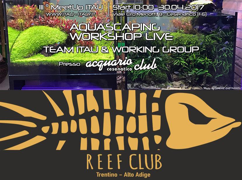 Nuovi eventi per il fine settimana - reef club ed aquascaping live presso acquario club cesenatico