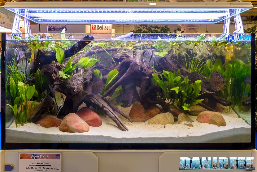 Biotopo Amazzonia