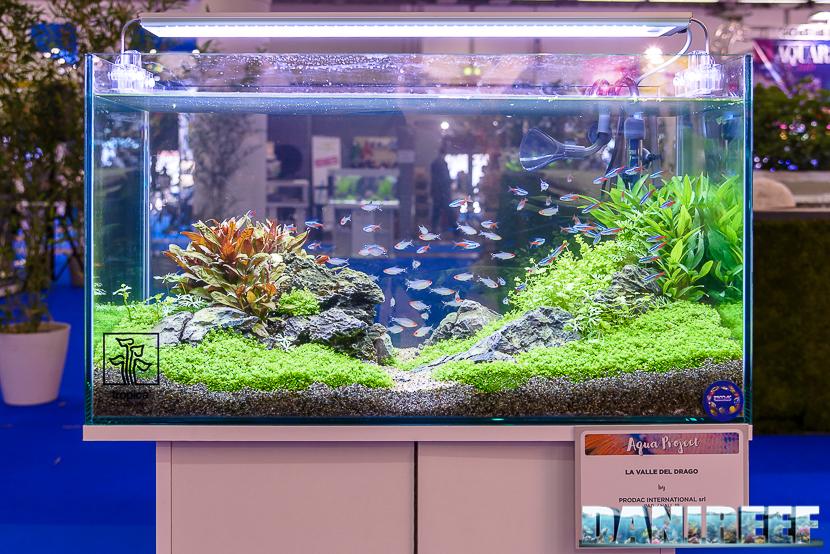 Zoomark 2017 lo stand prodac ed un nuovo mangime a base for Acqua acquario