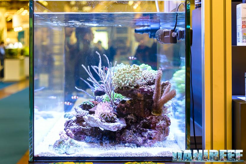 Zoomark 2017: acquario marino nello stand oceanlife