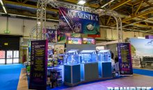 Zoomark 2017: Aquaristica booth with biotopes and many news