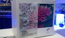 Coral Color Set – da Elos un nuovo bundle, ma solo in USA