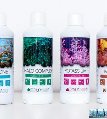 Colombo supplements for corals' colors
