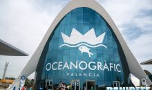 Oceanografic Valencia – Reportage of the biggest Aquarium in Europe