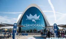 Oceanografic di Valencia – Reportage del più grande acquario in Europa