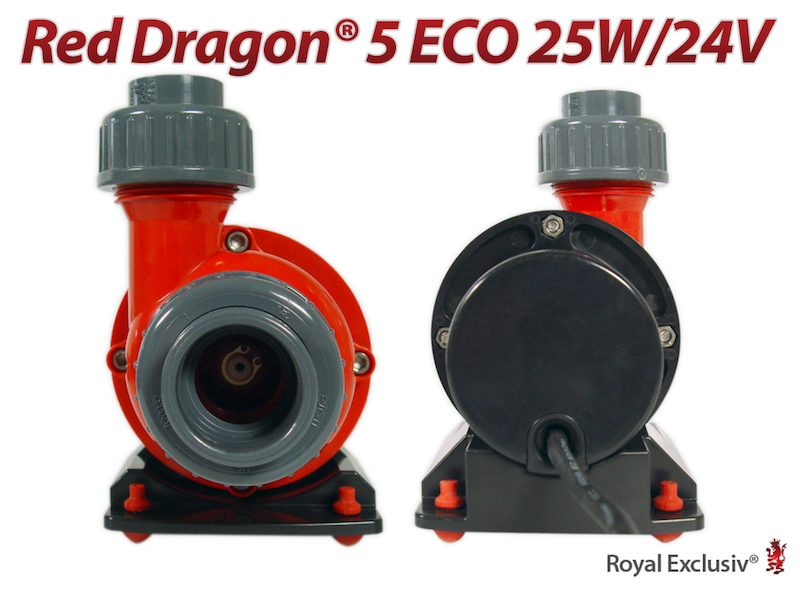 Red Dragon 5 Eco 25 watt - vista anteriore e posteriore