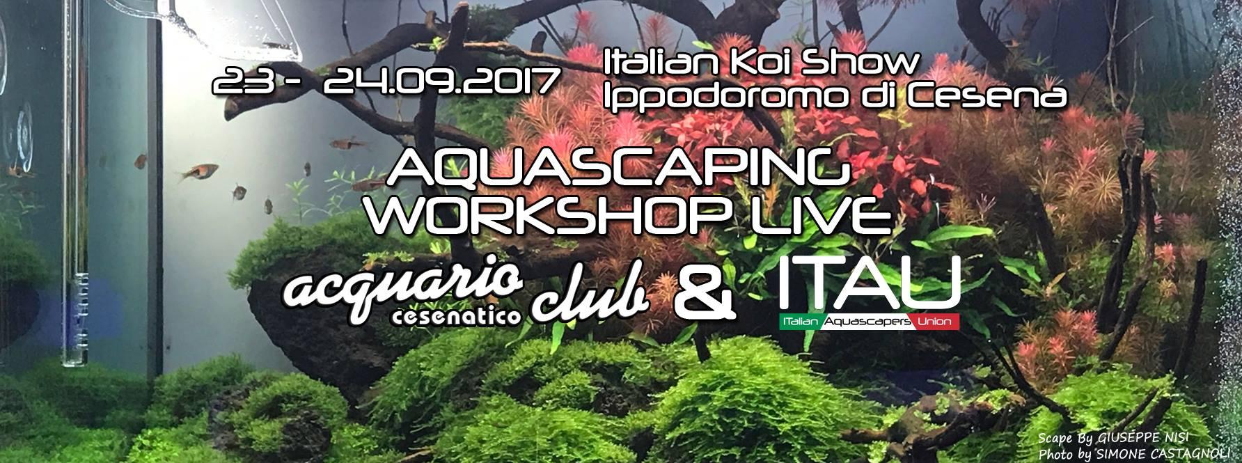 Aquascaping workshop live presso italian koi show 23 e 24 settembre 2017