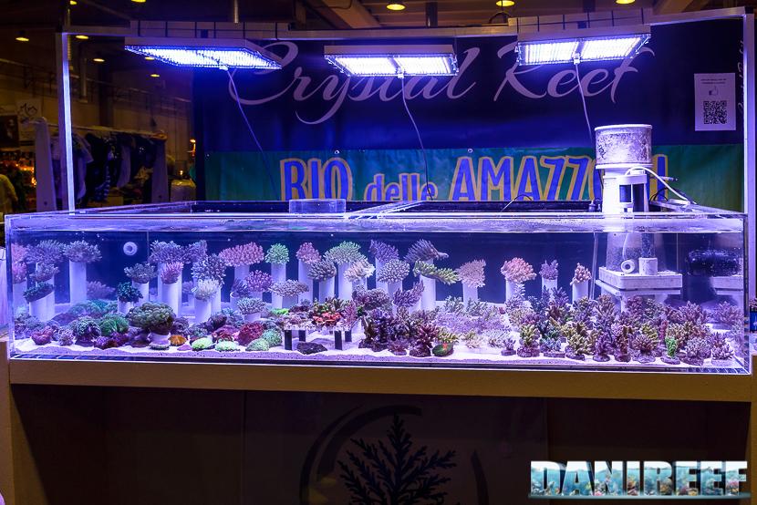 PetsFestival 2017: stand Crystal Reef Rio delle Amazzoni