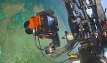 I droni per mappare lo sbiancamento della grande barriera corallina