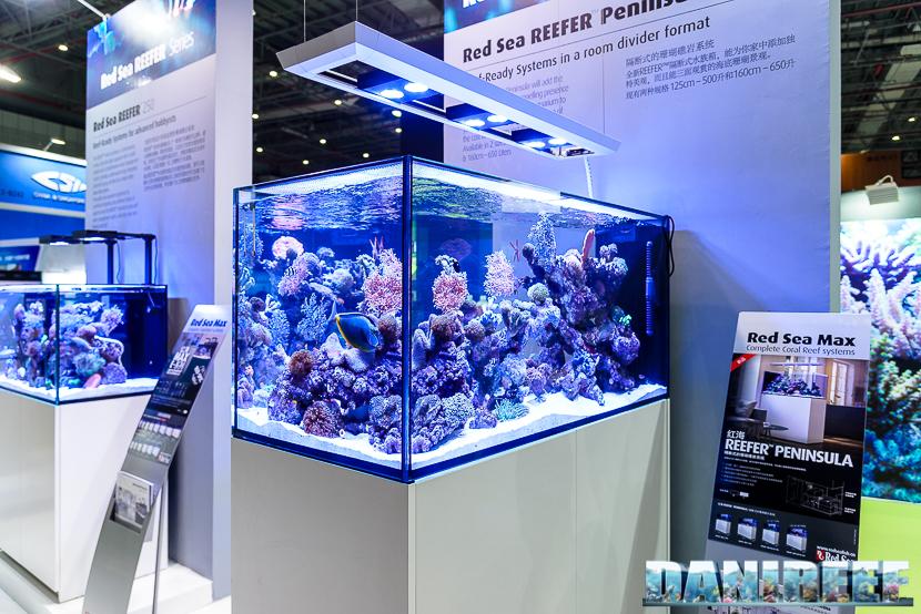 Cips 2017 a Shanghai: Red Sea Reefer Peninsula