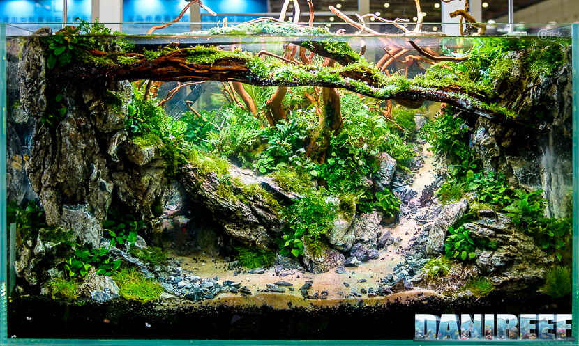 CIPS 2017: Aquascaping by Narto Tan