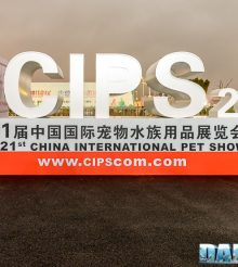 Cips 2017: Editorial. We were there and we'll tell you about