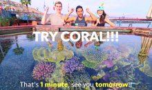 Try Coral: l'acquariofilia in 1 minuto in chiave satirico-impegnata