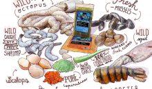 Un mangime congelato davvero speciale: Rogger's Reef Food (con ricetta)