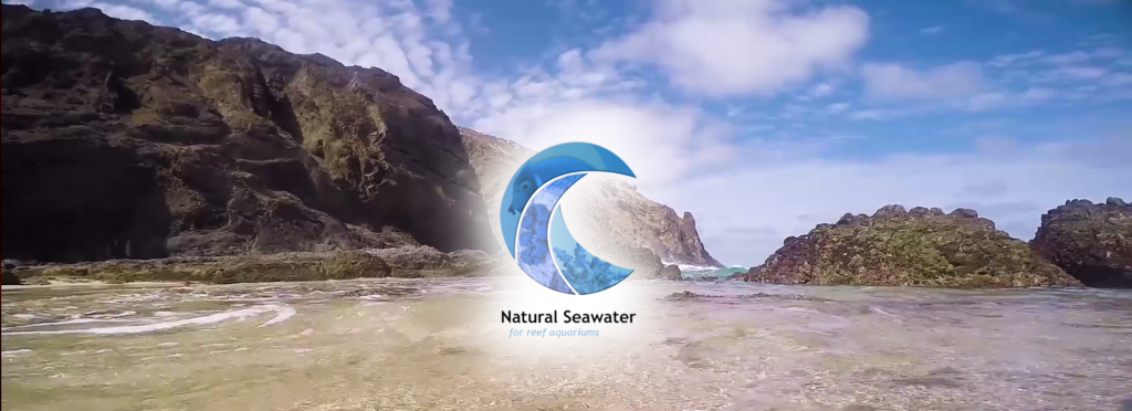 Natural Seawater from Portugal