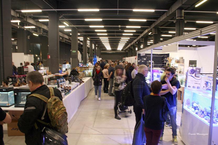 Aquarium Show a Milano