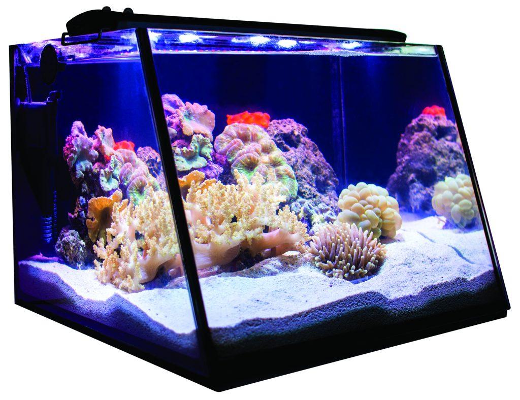 Il Fullview Aquarium presentato da Lifeguard Aquatics nel mockup in versione marina. Il vetro frontale è inclinato per una più agevole visione della vasca.