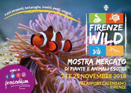 Firenze Wild 2019