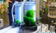 Interzoo 2018: Tunze astonishes with an algae reactor and new bacteria