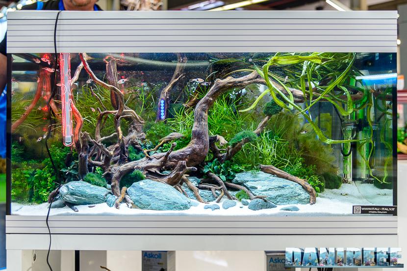 Interzoo 2018: l'acquario Pure XL HC LED presso lo stand Askoll
