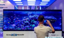 Interzoo 2018: Il maestoso acquario di DeJong MarineLife in foto e video 4K