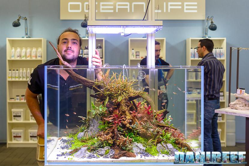 oceanlife, Simone Castagnoli, freshwater