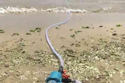 """Multato imprenditore che """"prelevava"""" acqua di mare senza autorizzazione"""