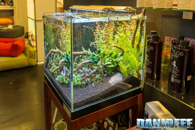 Interzoo 2018: aquascaping presso lo stand Elos