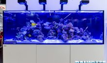 ReefLED ReefWave ReefDose and ReefClean from Red Sea